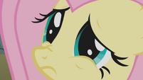 Fluttershy doe-eyed S1E07