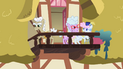 Old Ponies On Balcony S2E08