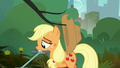 Applejack's hat snags on tree branch S5E16.png