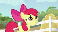 Apple Bloom giving a nervous smile S6E14