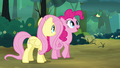 "Pinkie Pie ""What's he saying?"" S4E18.png"
