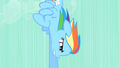 Rainbow Dash speeding downward S01E19.png
