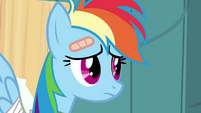 Rainbow Dash sad S02E16