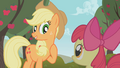 Applejack proud S01E12.png