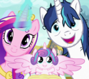 A Flurry of Emotions