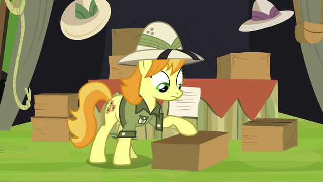 File:Daring Do collector packing up S4E22.png