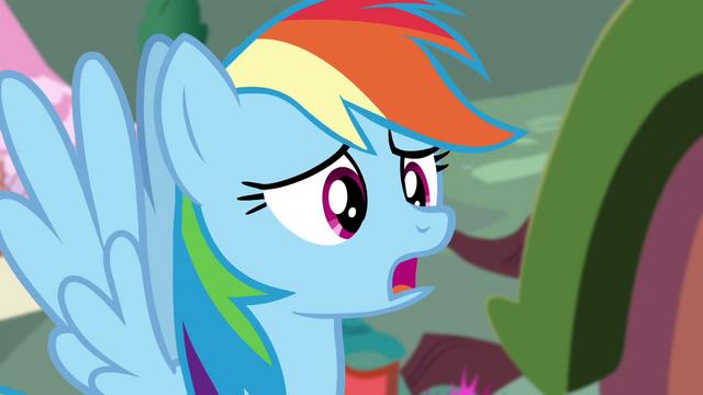 File:Rainbow apologizes S4E21.png