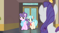 Rarity sees Suri and Coco S4E08.png