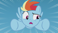 """Filly Rainbow Dash """"I can't do that!"""" S5E25.png"""