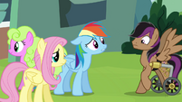RD and Fluttershy find Stellar Eclipse S4E22