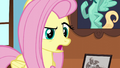 "Fluttershy ""so you just quit?"" S6E11.png"
