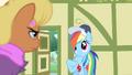 Rainbow Dash understands S4E05.png