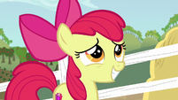 Apple Bloom grinning uncertainly S6E14