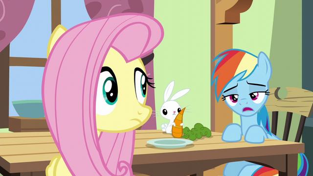 "File:Rainbow Dash ""maybe like seventy percent"" S6E11.png"