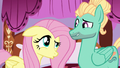 "Fluttershy ""what did you do?"" S6E11.png"