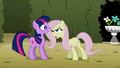 Fluttershy and Twilight S02E02.png