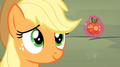 Applejack looks at her element S4E02.png