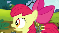 Apple Bloom looks toward Sweet Apple Acres S5E4