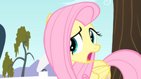 Fluttershy '...that's a bit harsh...' S4E07