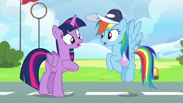 File:Twilight and Rainbow discover their friendship problem S6E24.png