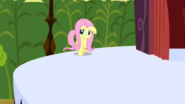 File:Fluttershy going on the stage S2E19.png