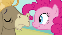 Pinkie Pie Expecting A Smile S02E18
