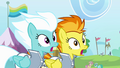 Spitfire and Fleetfoot shocked S4E10.png