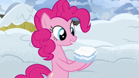 Pinkie Pie presents a snow sandwich S7E11