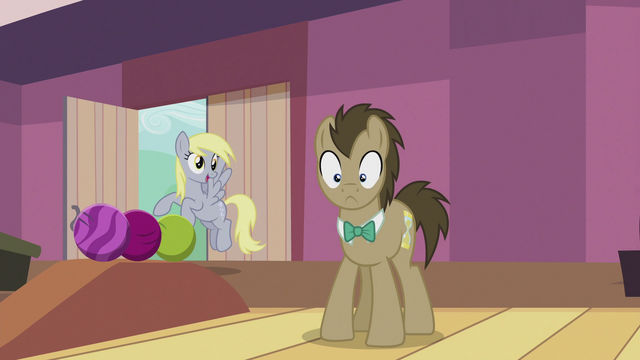"File:Derpy ""I'll use them for the wedding!"" S5E9.png"