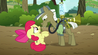 Pest pony looks at Apple Bloom S5E04
