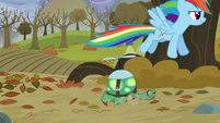 Rainbow puts Tank on the ground S5E5