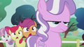 CMC shocked at Diamond's confession S5E18.png