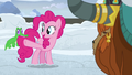 """Pinkie Pie """"Twilight and the others will"""" S7E11.png"""
