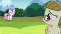Sweetie Belle runs into Zipporwhill S7E6.png