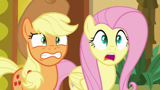 File:Applejack and Fluttershy in nervous shock S6E20.png