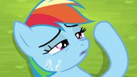 Rainbow Dash gains consciousness S4E22