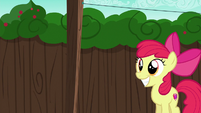 Apple Bloom excited to see her cart S6E14