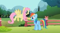 Fluttershy poke Rainbow nose S2E7