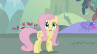 Fluttershy is afraid S1E07