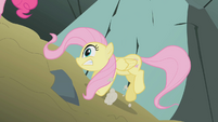 Fluttershy looses her footing S1E07