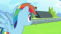 Rainbow Dash notices the nearby bleachers S7E7