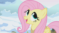 "Fluttershy ""this is my favorite task of the whole season"" S1E11"