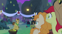Grand Pear discovers the secret wedding S7E13