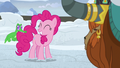 Pinkie Pie grinning at Gummy S7E11.png