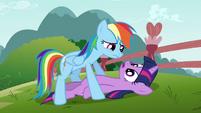 Rainbow Dash over Twilight S3E5