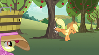 Applejack bucking another apple tree S7E9