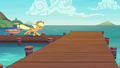 Applejack returns to the Seaward Shoals docks S6E22.png