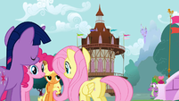 4 of the Mane 6 gathered in Ponyville S1E19