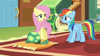 "Fluttershy ""I don't think he needs that"" S5E5"