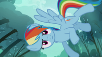 Rainbow looking at Scootaloo from above S3E6